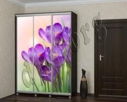 Шкаф купе каталог Цветы (97873337)