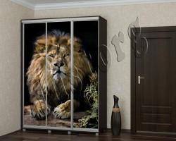 Шкаф купе каталог Животные (16539808)