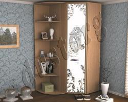 Шкаф купе с пескоструйным рисунком 187с