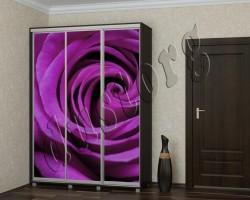 Шкаф купе каталог Цветы (2380551)