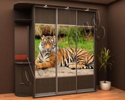 Шкаф купе каталог Животные (39057223)